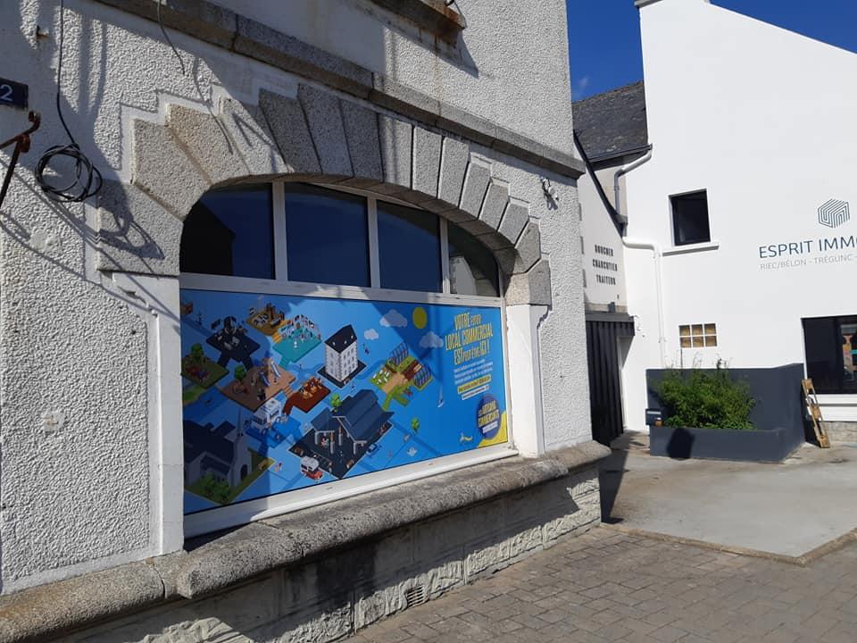 Graphiste com un poisson Finistère Quimperlé Lorient Concarneau